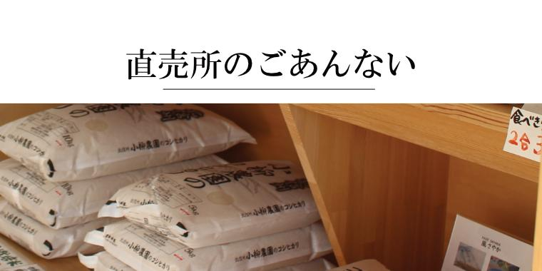 お米の定期購入