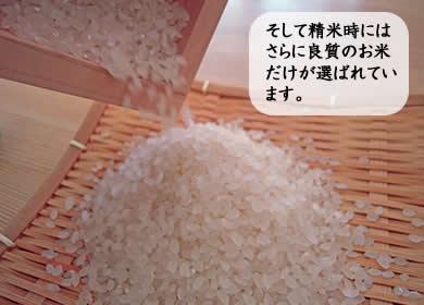 そして精米時にはさらに良質のお米だけが選ばれています。