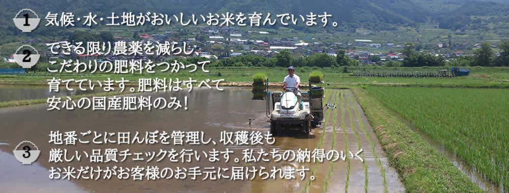 できる限り農薬を減らし、こだわりの肥料を使って育てています。肥料はすべて安心の国産肥料のみ